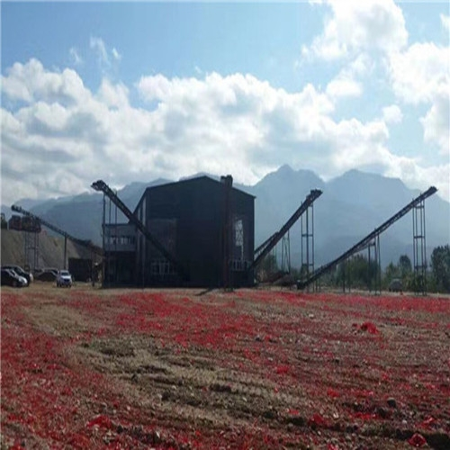 西双版纳南扬砂厂开业现场